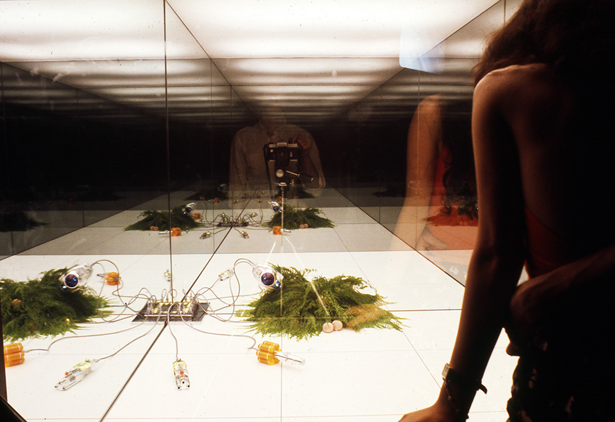 "6. Superstudio, Microevent/Microenvironment, 1972. Photograph by Cristiano Toraldo di Francia, courtesy of Emilio Ambasz. Environments and Counter Environments. ""Italy: The New Domestic Landscape,"" MoMA, 1972, Graham Foundation for Advanced Studies in the Fine Arts"