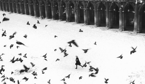 GIANNI BERENGO GARDIN - proiezione video