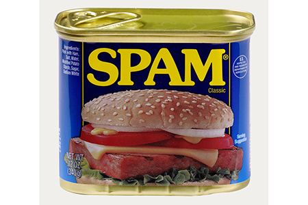 Spam Criticism